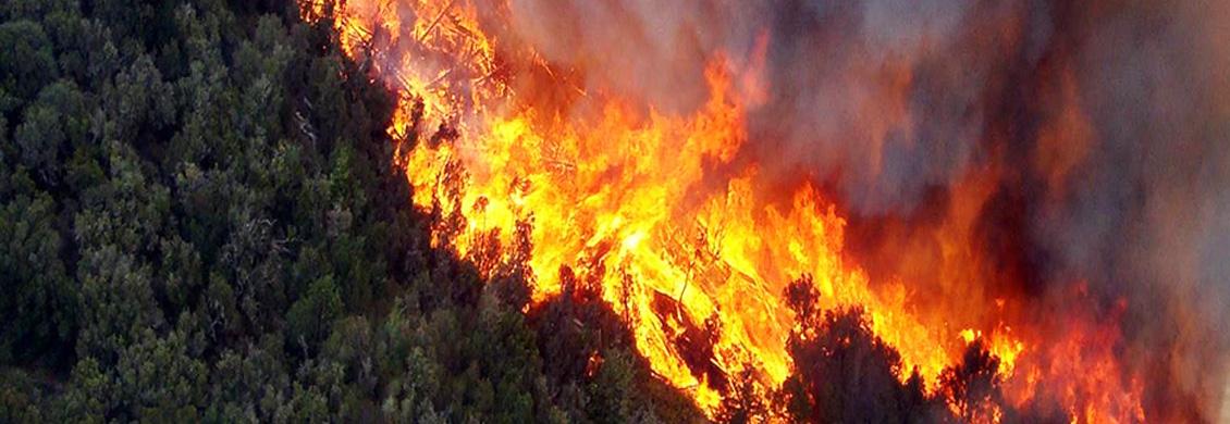 Incendio Garajonay